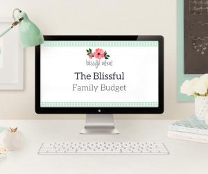 The Blissful Family Budget
