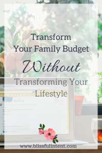 Blissful Family Budget