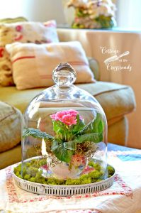 Spring Under A Glass Bell Jar