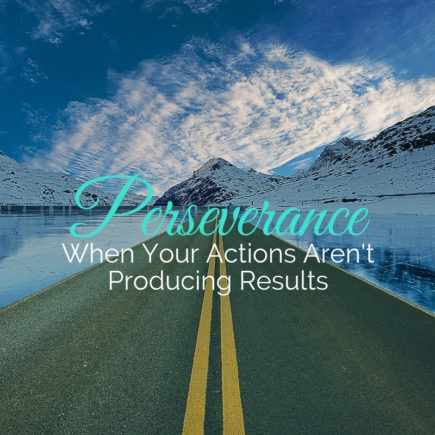 Perseverance When Your Actions Aren't Producing Results